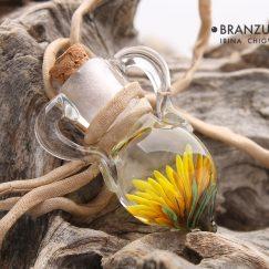 Dandelion bottle